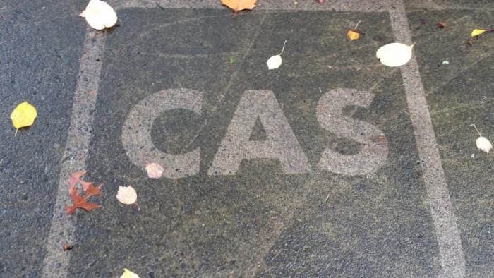 CAS Stone